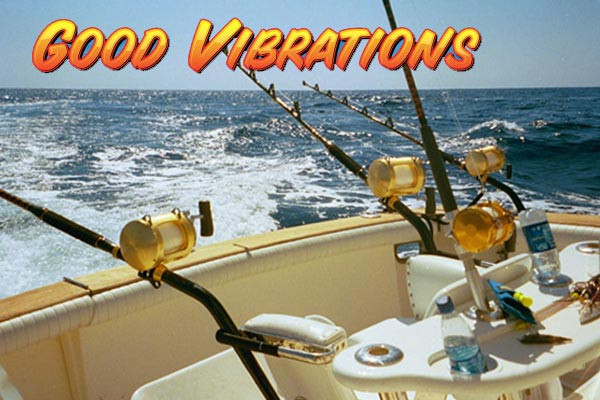 Good vibrations charters cocoa beach for Fishing charters cocoa beach