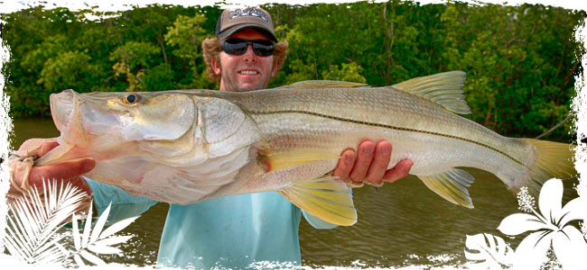 Charter Fishing in the Cocoa Beach Area